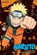 Naruto (3-in-1 Edition), Vol. 13